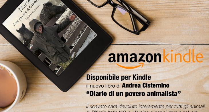 kindle amazon Andrea