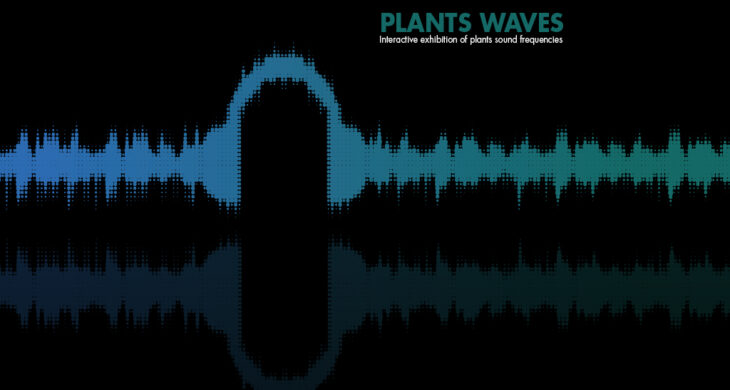 cover plantswaves